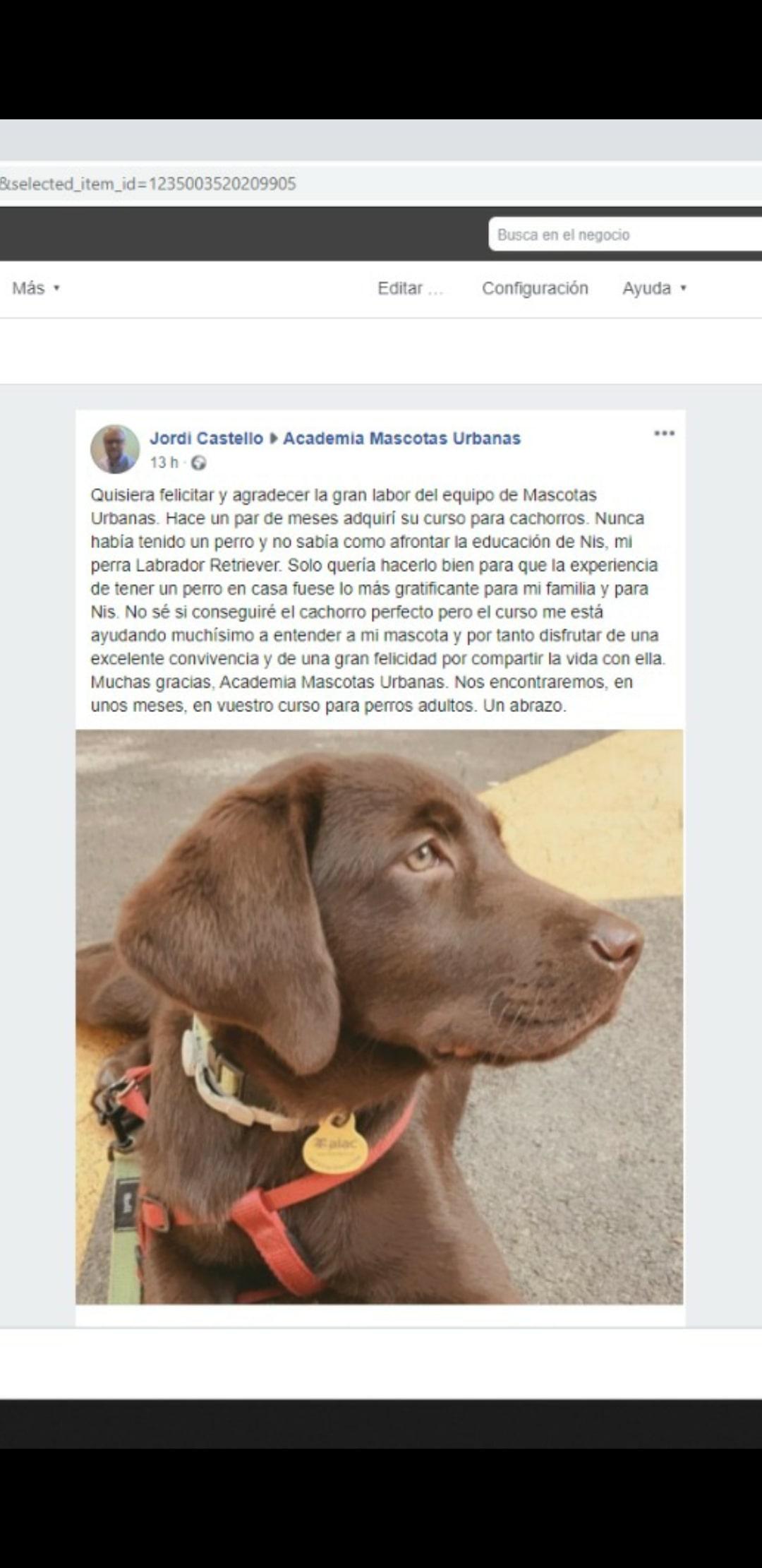 Testimonios_cachorros_7-min