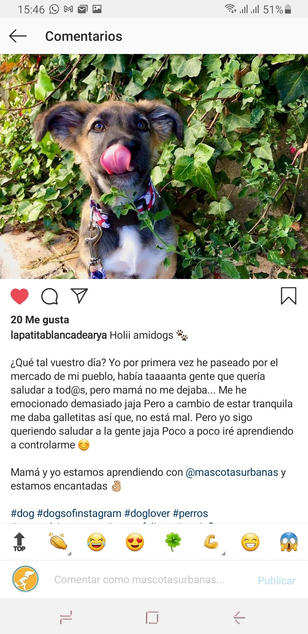Testimonios_cachorros_8-min